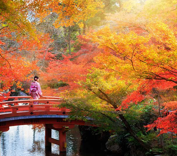 (English) NEW EXPERIENCES WHEN TRAVELING TO JAPAN IN NOVEMBER